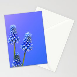 Grape Hyacinth Blue Stationery Cards