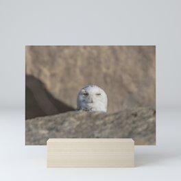 Peekaboo Snowy Owl Mini Art Print