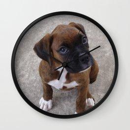 Inquisitive Boxer Pup Wall Clock