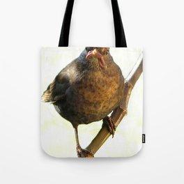 Female Blackbird (Turdus merula) Tote Bag