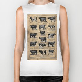 Vintage 1896 Cows Study on Antique Lancaster County Almanac Biker Tank
