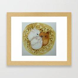 Bunny Hutch Framed Art Print