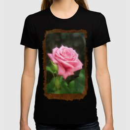Pink Roses in Anzures 3 Blank P3F0 T-shirt