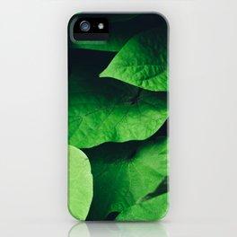 Fresh Green Leaves iPhone Case