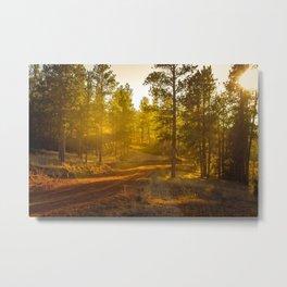 golden country road Metal Print