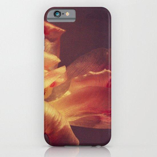 luce iPhone & iPod Case