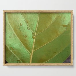 Sea Grape Leaf Serving Tray