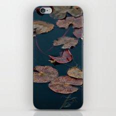 Lilypad iPhone & iPod Skin