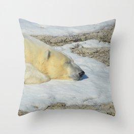 Sweet Dreams by Teresa Thompson Throw Pillow