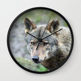 Wolf_20171001_by_JAMFoto Wall Clock