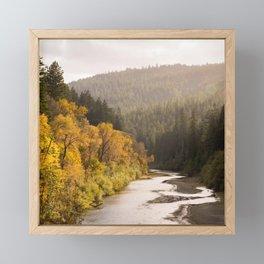 Humboldt County Fall Colors, Autumn Decor, Redwoods, Avenue of the Giants California Photography  Framed Mini Art Print