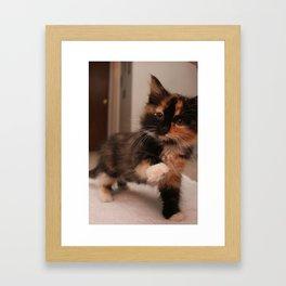 Kitty Wave Framed Art Print