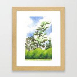 Briars, Leaning Pine Framed Art Print