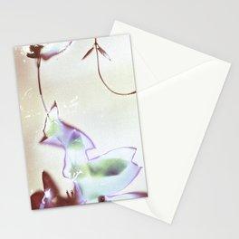Lumen S5 VE5 Stationery Cards