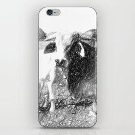 Brahman Bulls sketch iPhone Skin