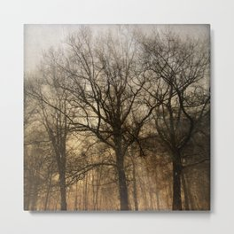 trees in a storm Metal Print