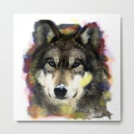 dirty wolf  Metal Print
