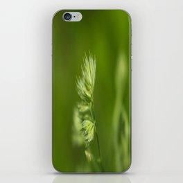 Green Plant iPhone Skin