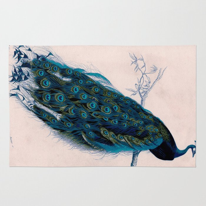 Vintage Peacock Bird Print Colorful Feathers 1800s Antique Art Nouveau Deco Nature Book Plate Rug By Igallery
