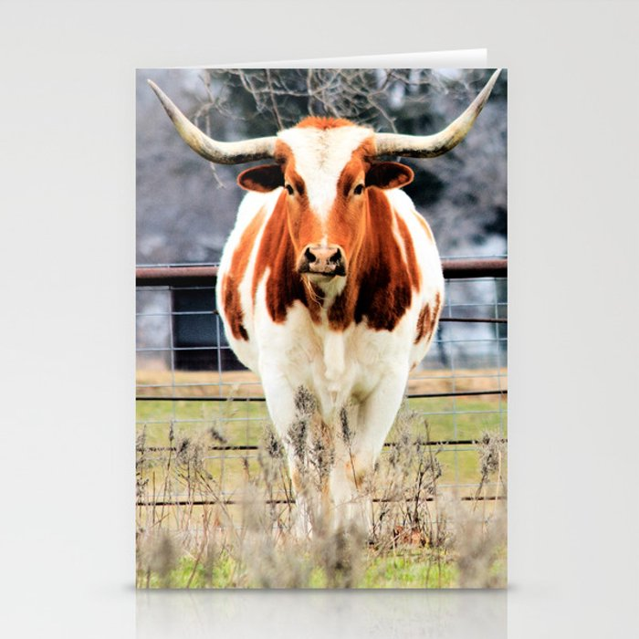 Texas Longhorn Morning Stationery Cards