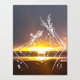 The Beauty of a Sunset Canvas Print