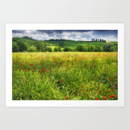 Tuscan Spring Meadow with Poppies Art Print