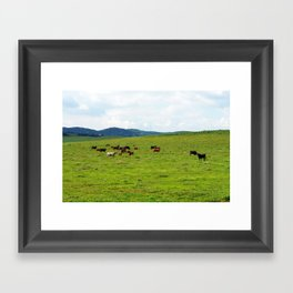 2007 - Bulls On Parade Framed Art Print