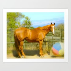 A Horse and Her Ball Art Print