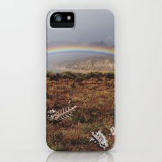 Rainbones Slim Case iPhone (5, 5s)