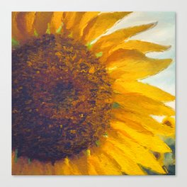 Sunflower Field In Late Summer Canvas Print