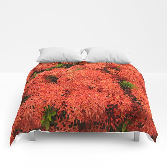 Tropical Orange Flowers Comforters