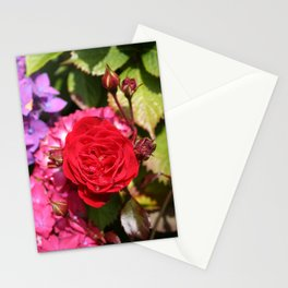 RED ROSE Stationery Cards