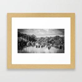 Dead Lakes Florida Black and White Framed Art Print