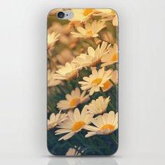 White daisy sunrise effect iPhone & iPod Skin