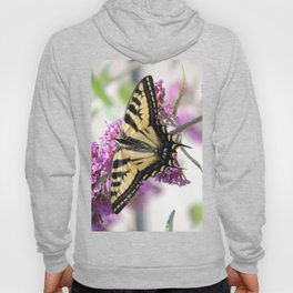 Western Tiger Swallowtail on the Neighbor's Butterfly Bush Hoody