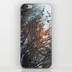 winter light iPhone & iPod Skin