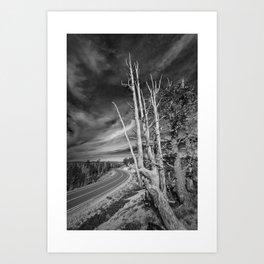 Bryce Canyon Highway Art Print