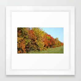 Fall in Fargo Framed Art Print