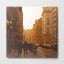 Budapest Winter Sun Metal Print