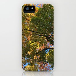 Changing Leaves Against a Blue Autumn Sky iPhone Case