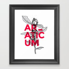 Araticum Framed Art Print