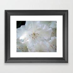 White Satin Framed Art Print