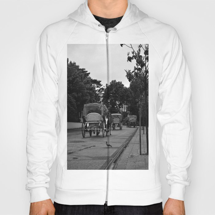 turtledove looking at phaeton in Buyukada Istanbul  Hoody
