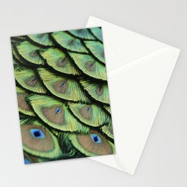 Peacock Feathers Stationery Cards