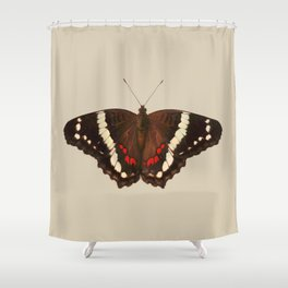 Anartia Fatima Shower Curtain