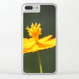 Flower or Sundial? Clear iPhone Case