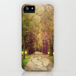 where the road leads to iPhone Case