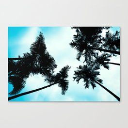 Turquoise Fun - nature photography Canvas Print