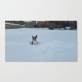 Wallace Snow Face Canvas Print