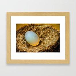 egg + nest Framed Art Print